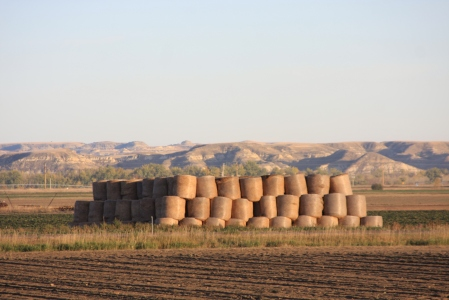 Eastern Montana towns are traditionally farming communities.